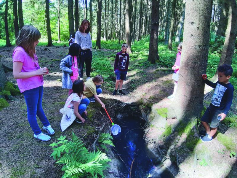 Foto der Kleinen Ferienfahrt. Kinder im Wald.
